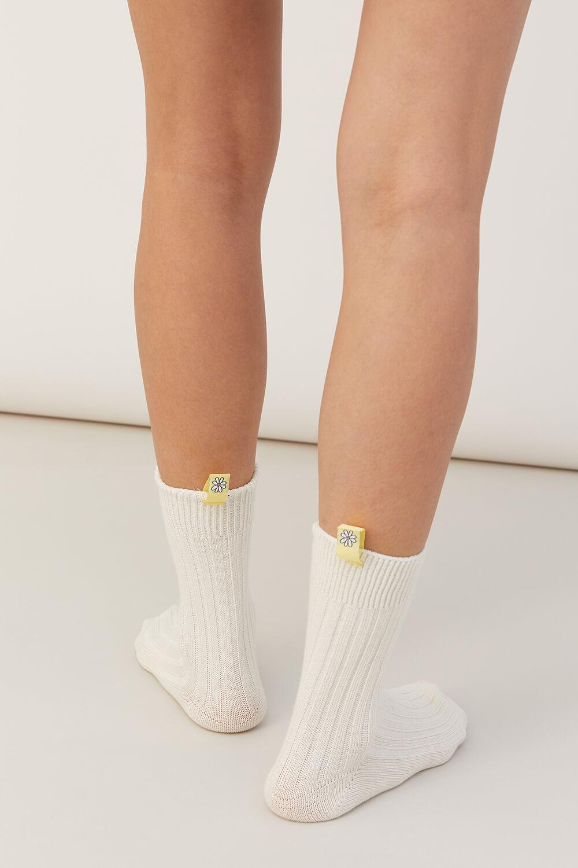 小雛菊長襪組